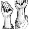"""بيان صادر عن الجبهة الديمقراطية لتحرير فلسطين لمناسبة """"عيد العمال العالمي""""  كل التحية لعمال وكادحي فلسطين في مواجهة حرب التجويع والتمييز المتعدد الاشكال"""